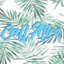 Logo CALL ALICE