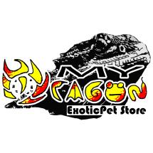 Logo MYDragon