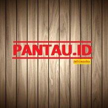 Logo PANTAU.ID