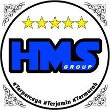 Logo HMS Store17
