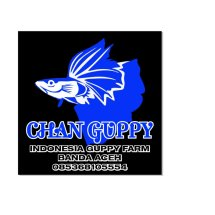 Jual Guppy Yellow Top Sword Kota Banda Aceh Chan Guppy Tokopedia