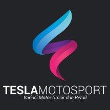 Logo TESLA motosport