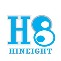 Logo Hineight Store