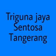 Logo Triguna Jaya Sentosa Trifinity