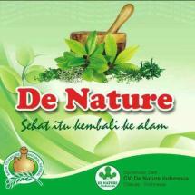 Logo CV. De Nature Indonesia