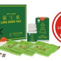 Logo Ling Shen Yao 1