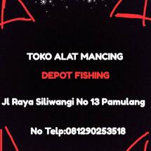 Logo Depot Fishing