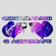 Logo Q Aquascape