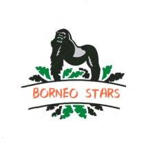 Logo BORNEO STARS