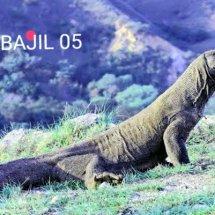 Logo BAJIL 05