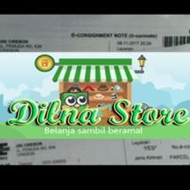 Logo Dilna Store