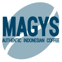 Logo MAGYS