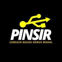 Logo PINSIR