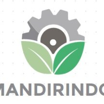 Logo Mandirindo