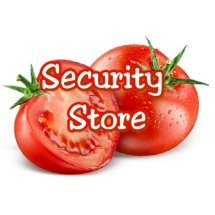 Logo securitystore