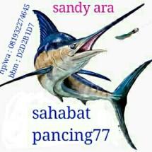 Logo sahabat pancing77