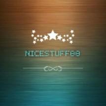 Logo Nicestuff88