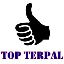Logo Top Terpal Surabaya