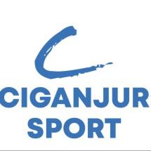 Logo CGR Sport