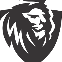 Logo DAMOZ SPORT