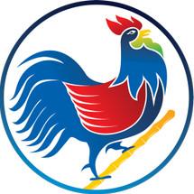 Logo Medan Jaya Food