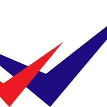Logo 2V Online Shop