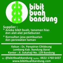 Logo Made in bdg