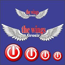 Logo thewingsgrosir