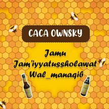 Logo Caca Ownsky