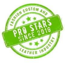 Logo New Pro Star