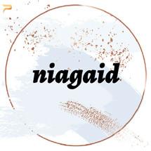 Logo niagaid