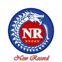 Logo New Record