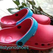 Logo ListyonoShoes