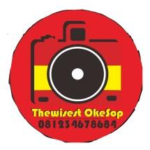Logo Thewisest Okesop