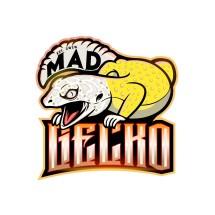 Logo Mad Gecko