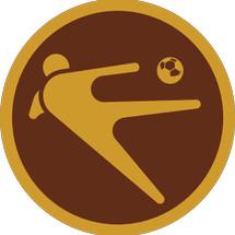 Logo fantasistafootball
