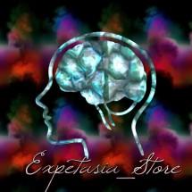 Logo Expetasia_Store