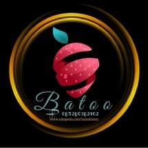 Logo Batoo