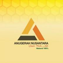 Logo Anugerah Nusantara