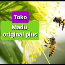 Logo Madu original plus