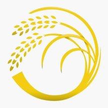 Logo Oryza Gold