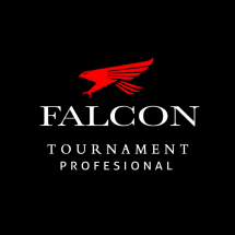 Logo Falcon Indoesia