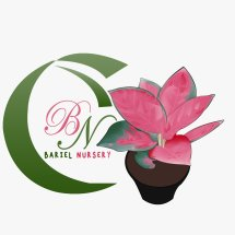 Logo Fitri Bariel Nursery