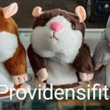 Logo Providensifit Shop