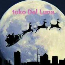 Logo toko DeL Luna