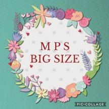 Logo MPS Bigsize