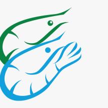 Logo Cobryzen Shop