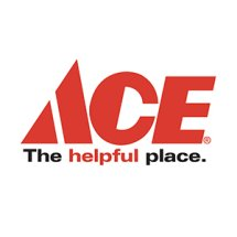 ACE Indonesia Brand