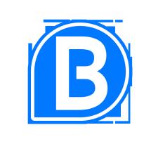 Logo Bidenbuy
