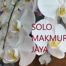 Logo Solo Makmur Jaya
